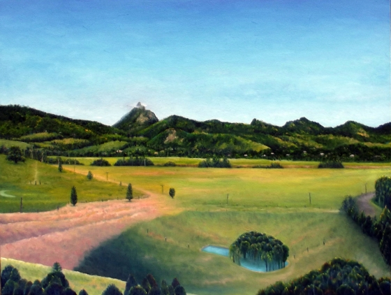 David Pavich 'A Clear Day(Murwillumbah)' 2015 Oil on Poly Cotton, 102x77cm, $3800_withtone